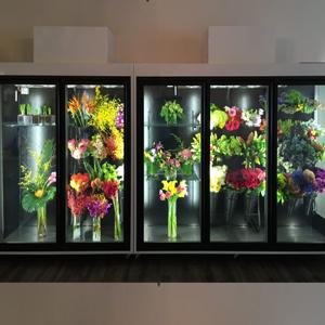 """五门鲜花柜---""""水下花园系列"""""""