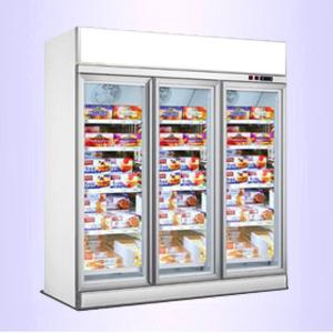 顶置立式冷冻柜