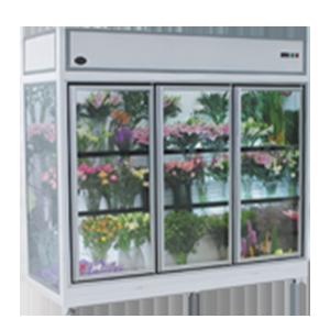 09HG 鲜花柜
